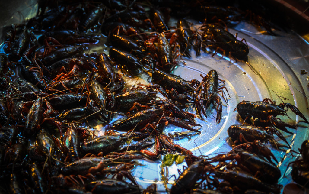 Street crawfish in Chengdu.