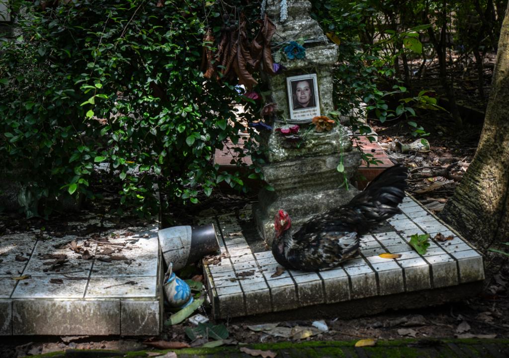 Chicken and stupa.